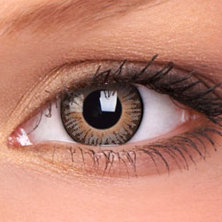 Brown 3 Tone Contact Lenses