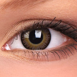 Hazel Fusion Contact Lenses