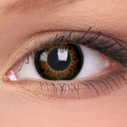Starburst Brown Contact Lenses