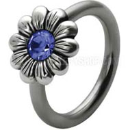 Blue Daisy Flower BCR