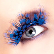 Blue Feather False Eyelashes